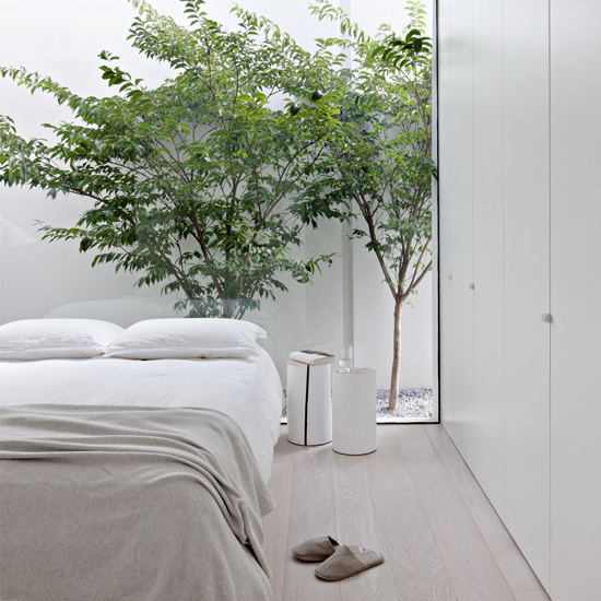 White walls and green trees are the main colors of Bourne Road Residence, designed by studiofour, one of the top interior designers melbourne has to offer